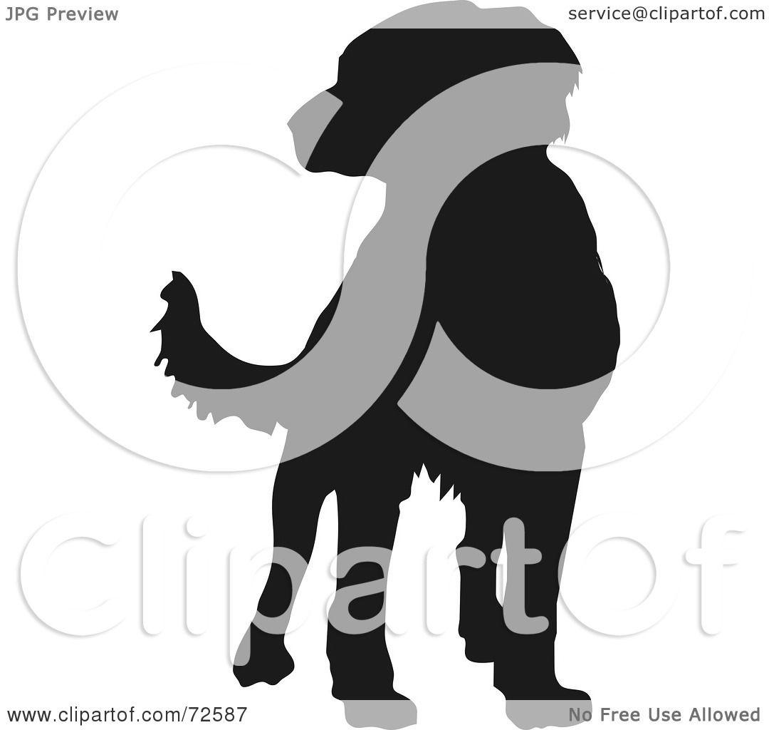 1080x1024 Royalty Free (Rf) Clipart Illustration Of A Dark Brown Labrador