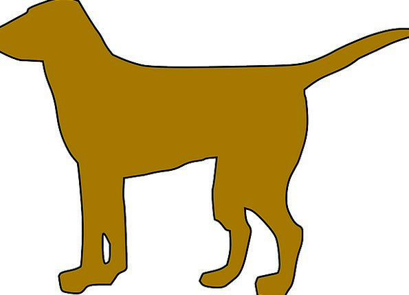 595x430 Dog, Outline, Pet, Domesticated, Silhouette, Standing, Stand Up