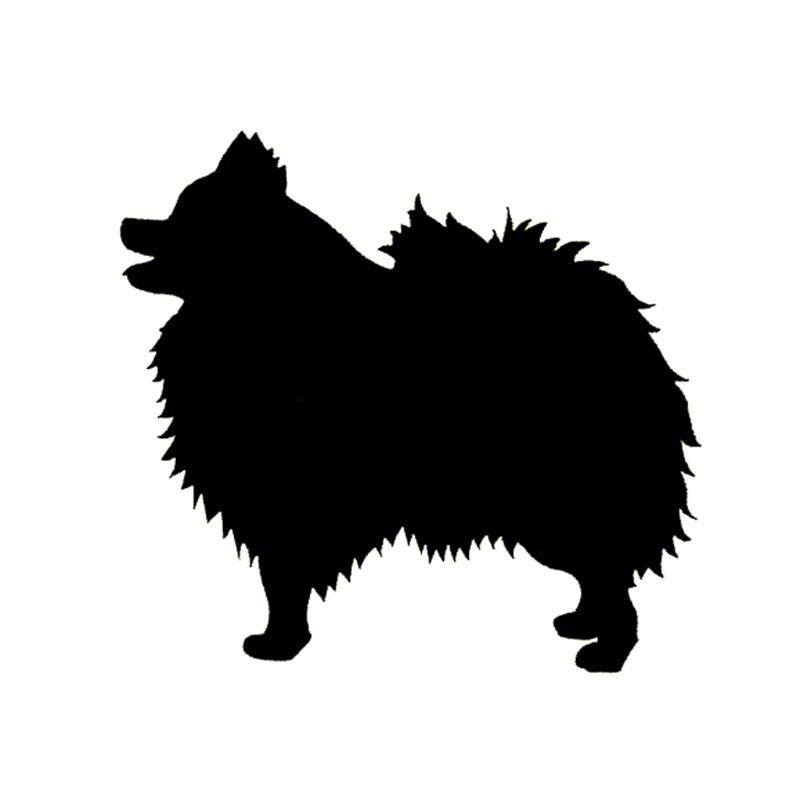 800x800 Pomeranian Clipart Dog Silhouette 3812074