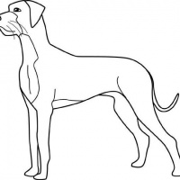 200x200 Dog Silhouette With Moonlight View Tattoo Design