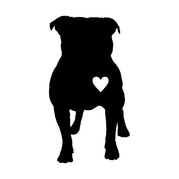 736x736 Pitbull Love Vinyl Decal By Fordycedesigns On Etsy Fordyce