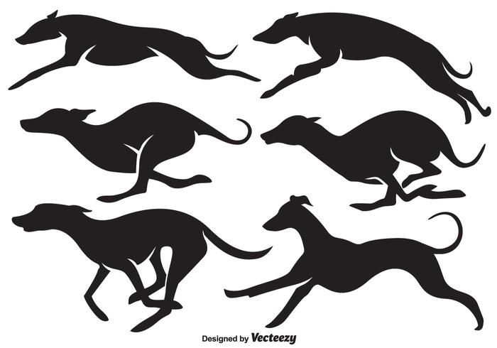700x490 Vector High Quality Whippet Dogs Silhouettes