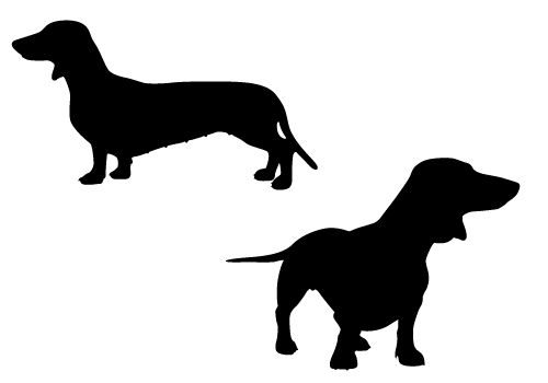 500x350 Cute And Playful Dachshund Pups In Silhouette Vectormat