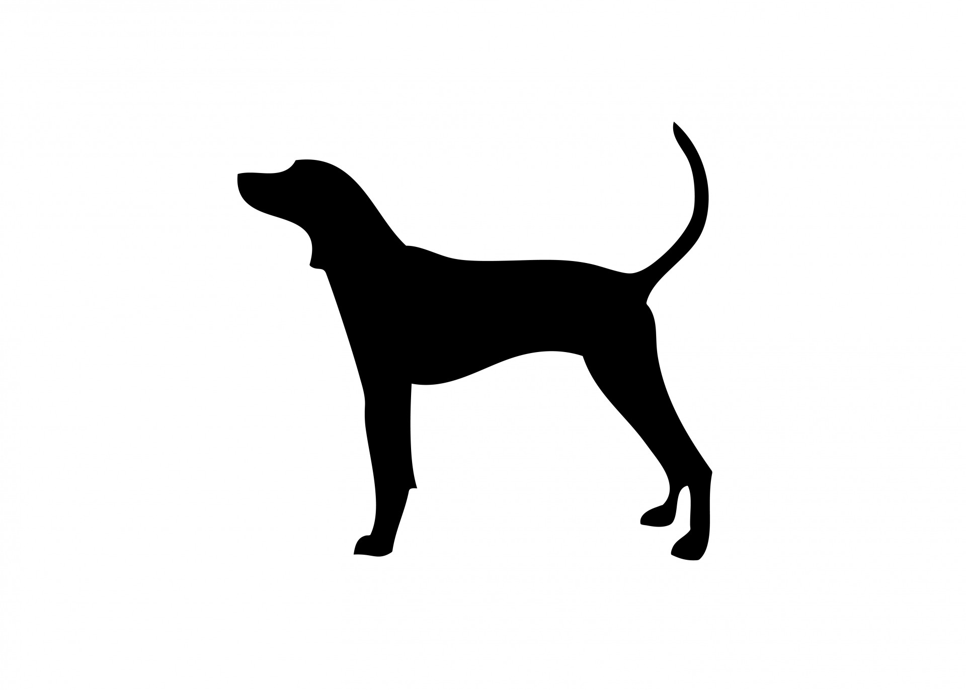 1920x1372 Dog Silhouette Free Stock Photo
