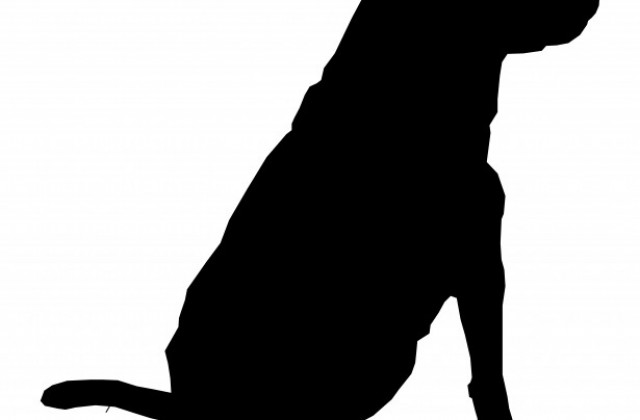 640x420 Dog Sitting Silhouette Drawing 01