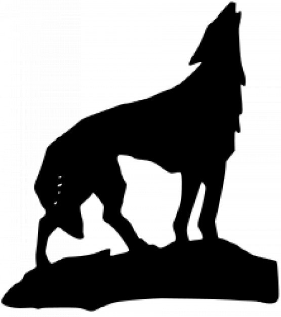 555x626 The World's Best Photos Of Silhouette And Wolf