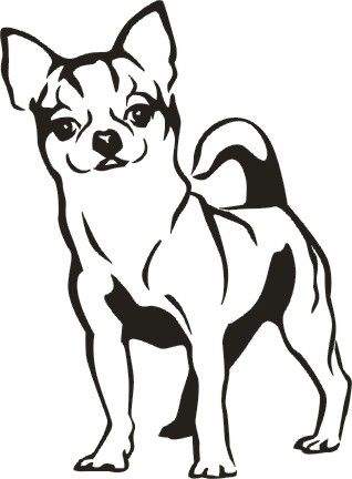 318x432 Chihuahua Show Your Love For Your Chihuahua With Our Unique
