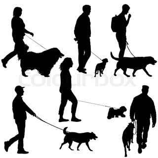 320x320 Rottweiler And Master Walk With A Leash Stock Photo Colourbox