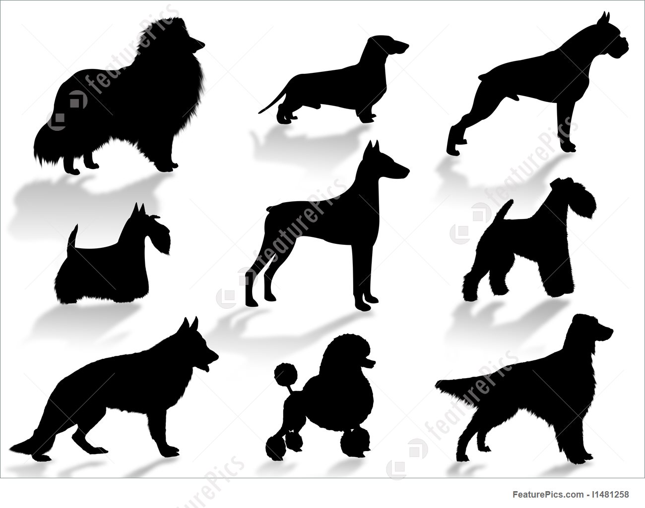 1300x1025 Dogs Breeds Silhouette Illustration