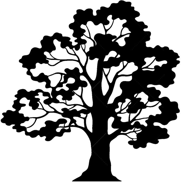 736x741 621 Best Plasma Cut Trees Images On Frame, Silhouettes