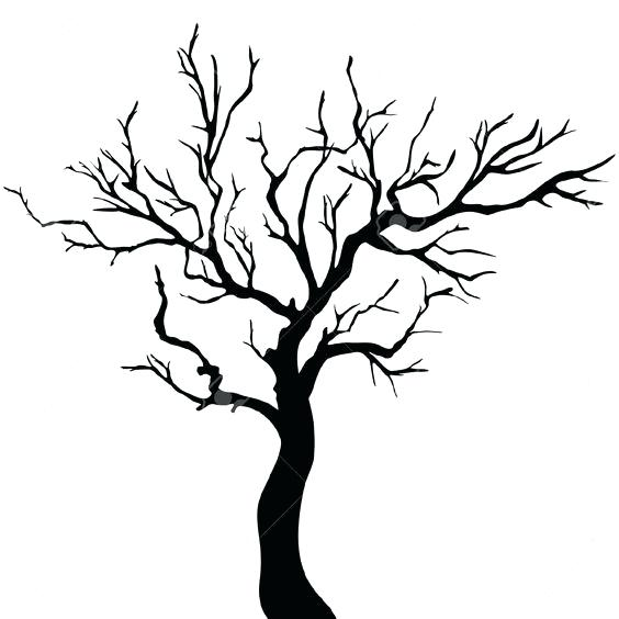 564x564 Free Tree Trunk Outline Download Free Clip Art Free Clip Art