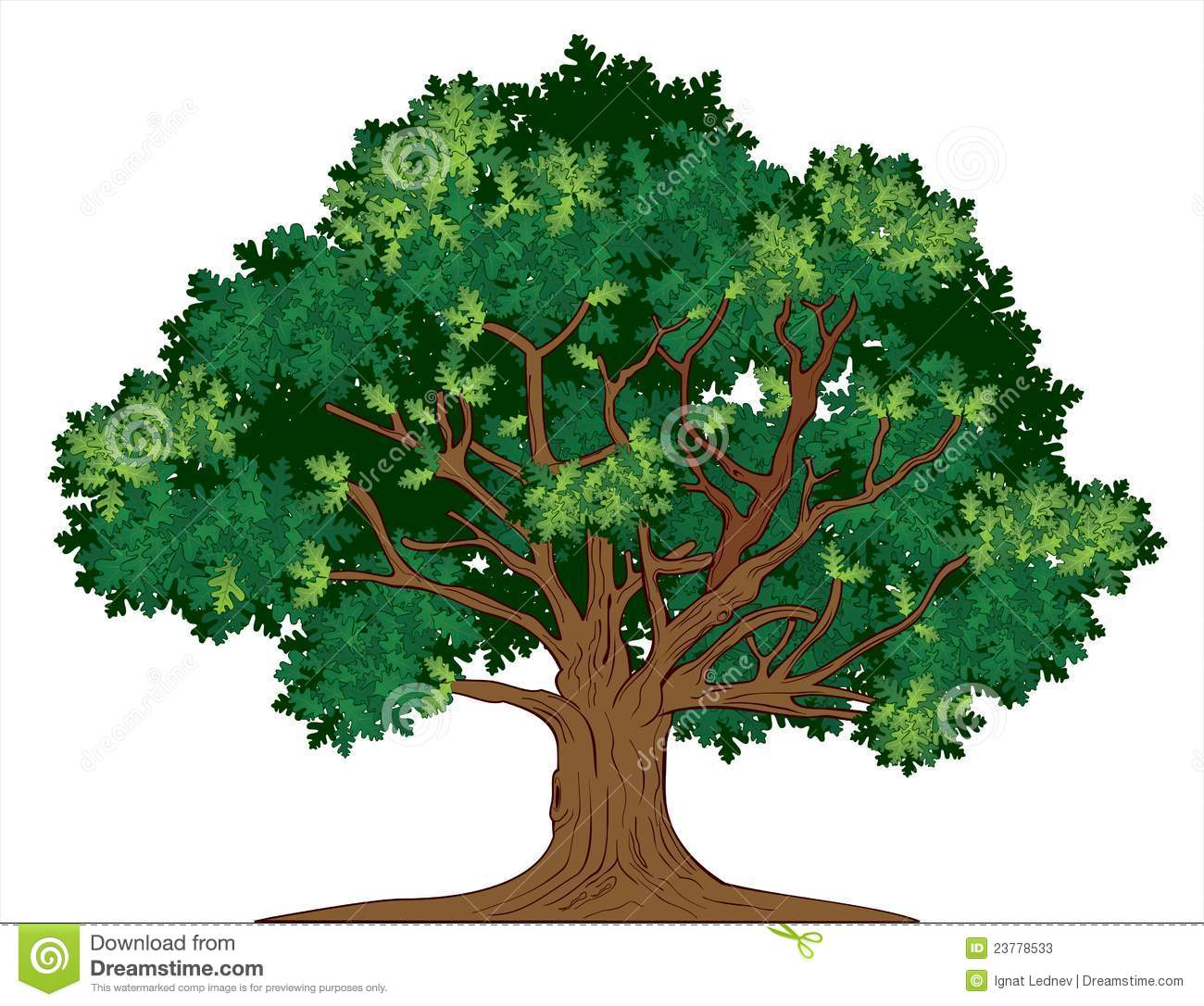 1300x1086 Images Of Tree 101 Clip Art