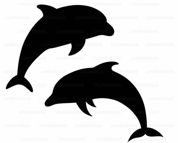 570x456 Dolphin Svgdolphin Clipartdolphin Svgdolphin Silhouettedolphin