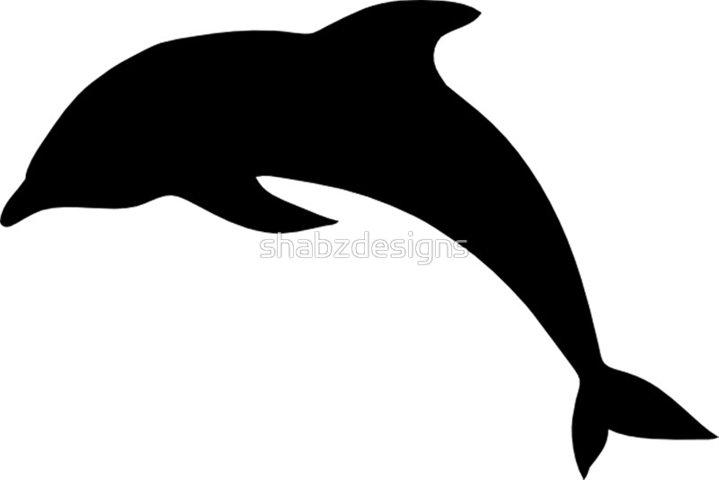 800x534 Cute Dolphin Silhouette Art Prints By Shabzdesigns Redbubble