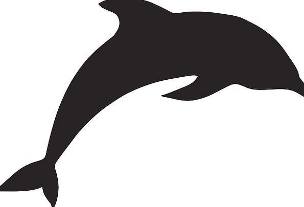 595x405 Dolphin, Hopping, Silhouette, Outline, Jumping, Fins, Marine