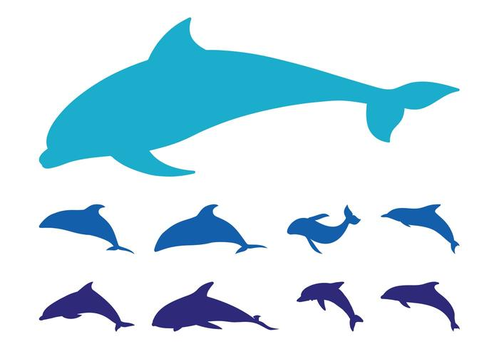 700x490 Dolphins Silhouette Set