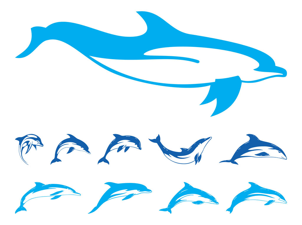 1024x765 Dolphins Graphics Set Vector Art Amp Graphics