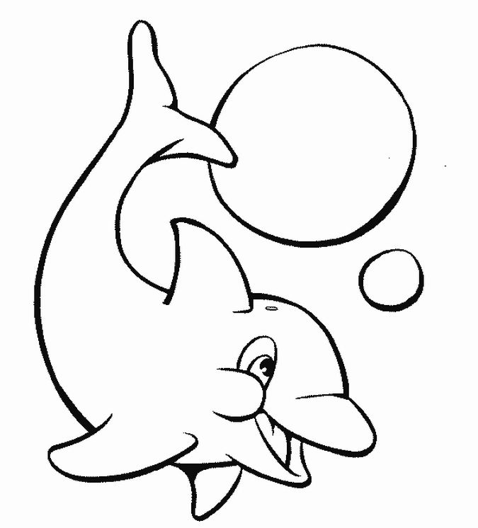 675x746 Dolphin Clipart Coloring Page 3233162