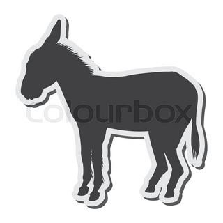 320x320 Donkey Breeds Icon Set. Animal Farming. Flat Design. Vector