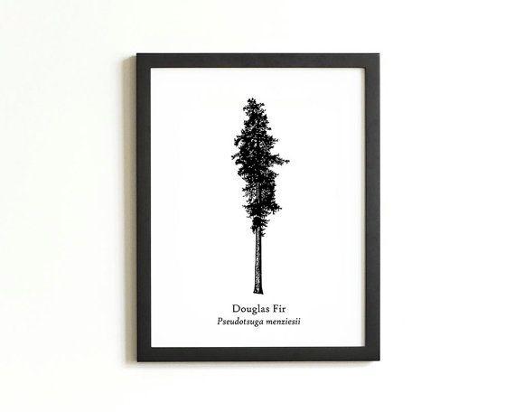 570x456 Douglas Fir Tree Silhouette Print Rustic Wall Art By 1840atelier
