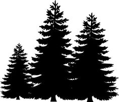 236x203 Impression Obsession Cling Stamp Pine Trees Cc101 Impression