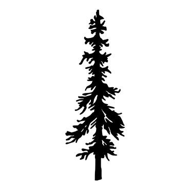 370x370 128 Best Trees Images On Tattoo Ideas, Water Colors
