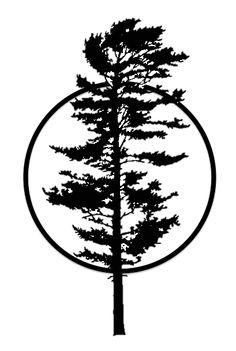 236x351 White Pine Tattoo Ideas Pine, Tattoo And Tatting