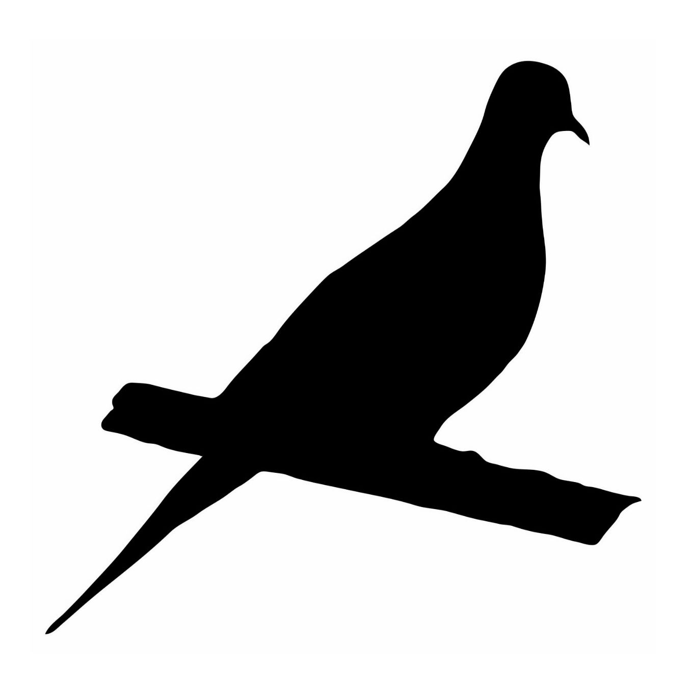 Dove Bird Silhouette