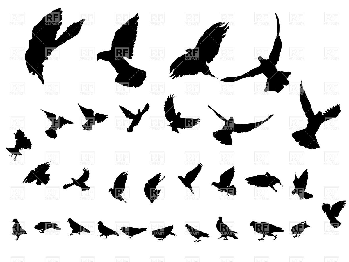 1200x900 Flying Dove Silhouettes Royalty Free Vector Clip Art Image