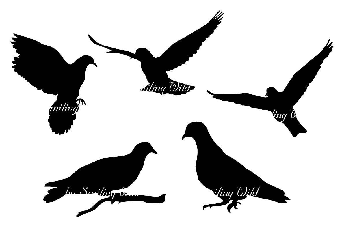 1191x842 Dove Silhouette Pigeon Svg Vector Clipart Bird Png Dove Art Print