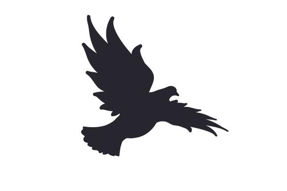 580x386 Silhouette Of Dove