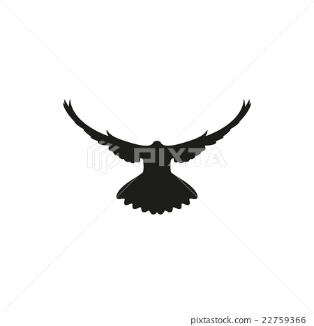 450x468 Dove Silhouette On White Background, Vector