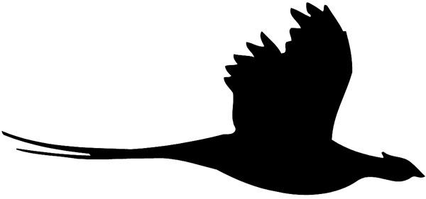 600x281 Clipart Pheasant Silhouette