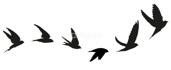 588x240 Flying Sparrow Silhouette Tattoo