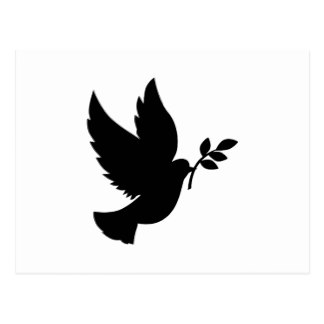 324x324 Dove Silhouette Cards, Photocards, Invitations Amp More