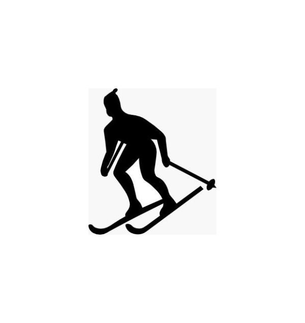 600x636 Silhouette Skier No.1 On Luulla