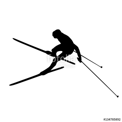 500x500 Cross Country Skiing, Downhill. Vector Silhouette Stock Image