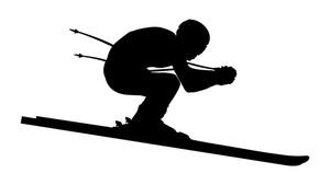 300x169 Skiing Downhill Royalty Free Vectors