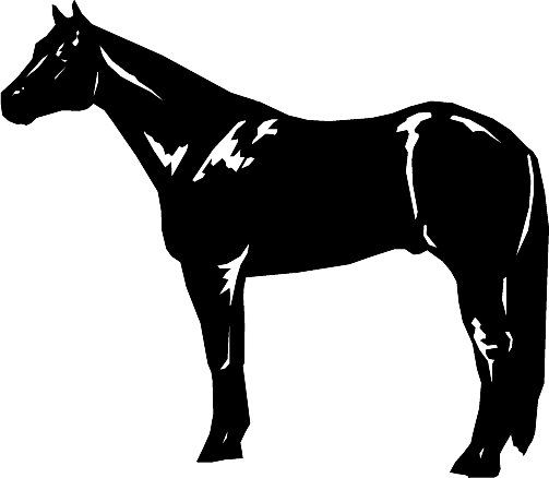 503x438 Quarter Horse Horse Clipart Horse Sketches, Etc.
