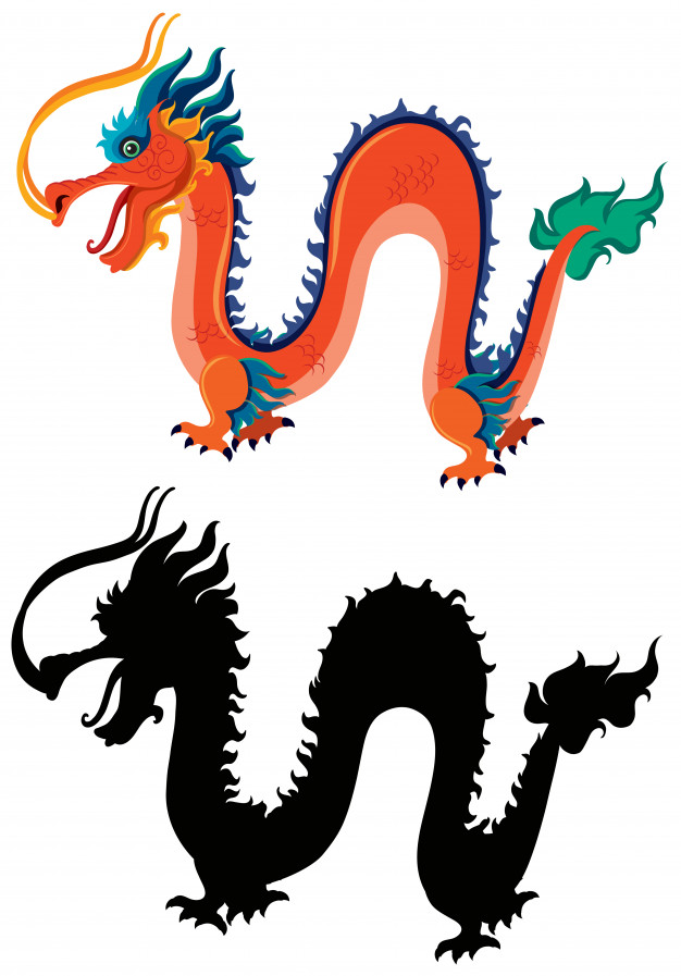626x897 Chinese Dragon And Silhouette Vector Premium Download