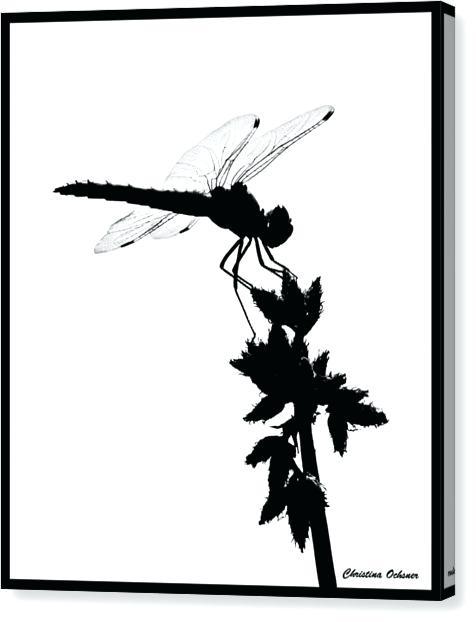 476x622 Dragonfly Silhouette Dragonfly Silhouette Vector Download Free