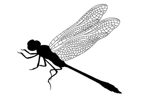 550x354 Dragonfly Silhouette Vector Silhouettes Vector