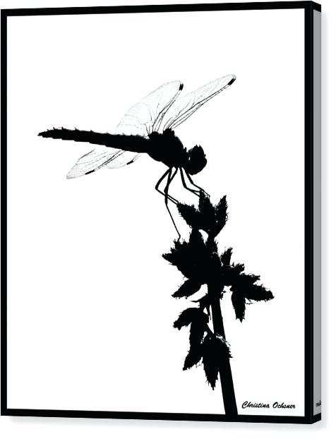 dragonfly silhouette images at getdrawings com free for personal