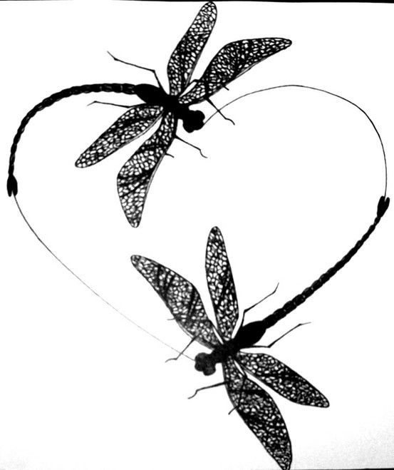 553x659 Image Result For Dragonfly N Heart Silhouette Tattoos
