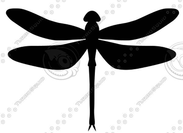 600x436 Shapes Ai Dragonfly Black And Embroidery