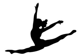 300x210 Majestics Dance Team Audition Information
