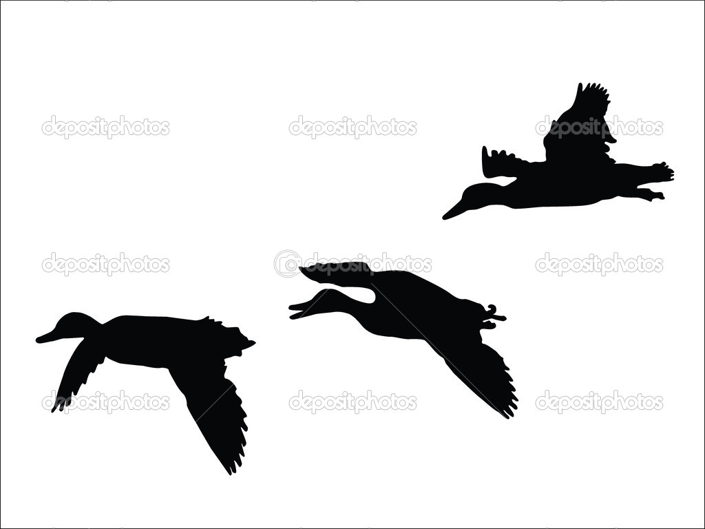 1024x768 Mallard Silhouette Clip Art