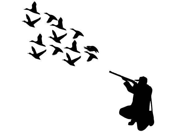 570x429 Hunter Duck Gun Nature Hunting Hunt Hobby Rifle Weapon Goose