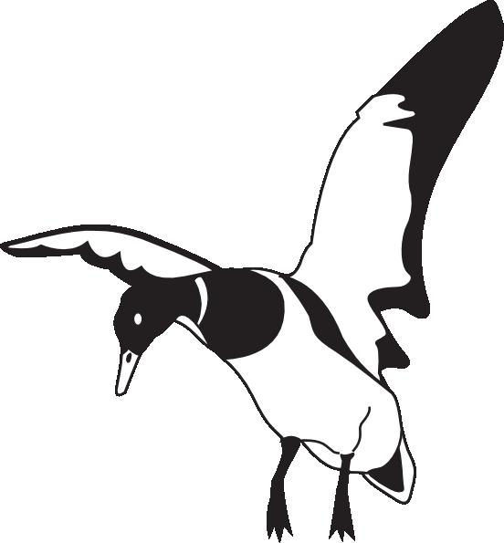 552x595 Landing Black And White Duck Clip Art