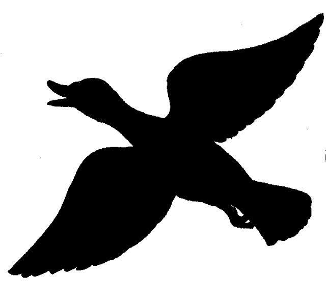 640x591 Free Duck Silhouette B Silhouettes, Cricut